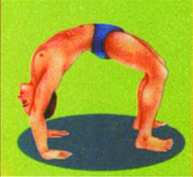 rasa-yoga-sete